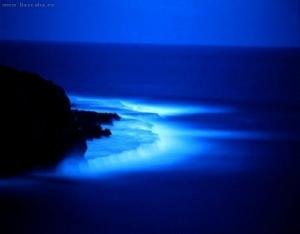 natura-albastra_b7a7df8baa3fc6